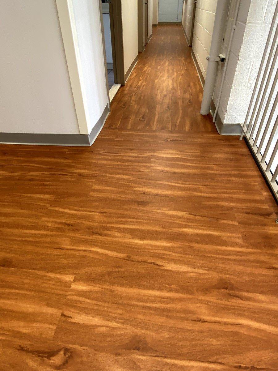 Gill St, Bernards school hallway flooring